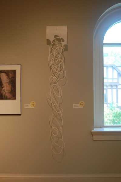 "String Theory-WD Long View, Newport Art Museum, 78""x12""x6"""